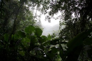 best-central-america-hikes-05